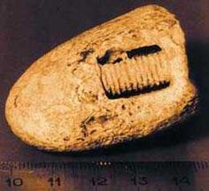 In the summer of 1998, Russian scientists who were investigating the remains of a meteorite 300 km southwest of Moscow discovered a piece of rock which enclosed an iron screw. Geologists estimate that the age of the rock is 300-320 million years. At that time, not only were there no intelligent life forms on earth, there weren't even dinosaurs. Scientists initially thought that the screw was in a farm machine. But the screw was firmly fixed in the rock.