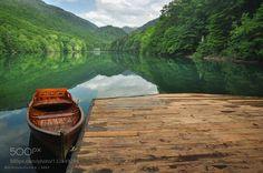 Biogradsko Lake Biogradska Gora National Park Mo by nicholasolesenphotography