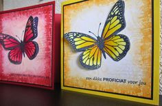 Pan Pastel BNL: Vlinders in unikleuren