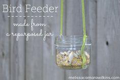 DIY repurposed jar bird or butterfly feeder #backyardwildlife