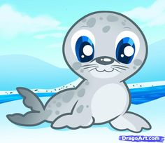 seal cute photo