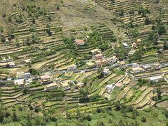 Valle Gran Rey, La Gomera - beautiful, peaceful and a little bit bonkers!