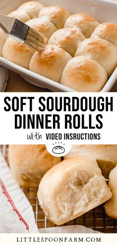 Soft sourdough dinner rolls are everything you ever dreamed of! These amazing, pull-apart style dinner rolls are soft and fluffy with just a touch of sweetness. This is an easy sourdough recipe that you'll want to make every week. Sourdough Dinner Rolls, Sourdough Bagels, Sourdough English Muffins, Dinner Rolls Recipe, Sourdough Recipes, Bread Recipes, Brioche Recipe, Bun Recipe, Pull Apart