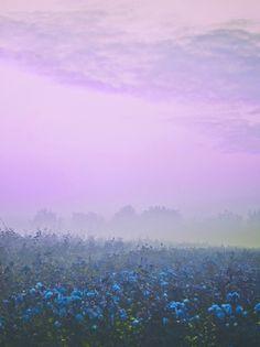 Die Strichliste der guten Momente. — Lavender auf We Heart It -...