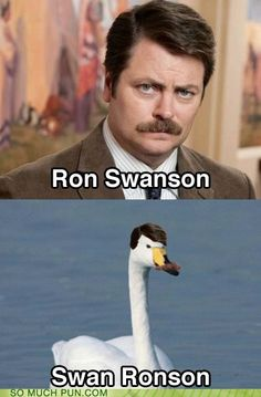 Funny pictures about Ron Swanson. Oh, and cool pics about Ron Swanson. Also, Ron Swanson photos. Parks And Recreation, Parks N Rec, Ron Swanson, Celebrity Name Puns, Funny Puns, Funny Stuff, Funny Things, Awesome Stuff, Jokes