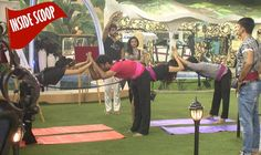 The Big or Breaking News from the Field of Television or I can say from the Television Reality Show Bigg Boss Season 9 has been kicked off just some days ago wi(. Rochelle Rao, Yuvika Chaudhary, Mandana Karimi, Whats Wrong, Dolores Park, Boss, Around The Worlds, Day, Search