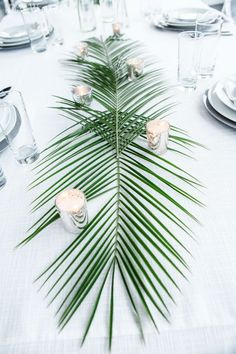 Palm centrepieces for a modern tropical wedding! Modern Tropical Wedding Ideas w… Palm centrepieces for a modern tropical wedding! Modern Tropical Wedding Ideas www. Beach Wedding Favors, Hawaii Wedding, Wedding Table, Tropical Wedding Centerpieces, Wedding Cakes, Tropical Wedding Decor, Tropical Weddings, Modern Centerpieces, Beach Wedding Themes