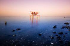 【文化】佐賀 大魚神社「海中鳥居」   文化   SAKURAvillage