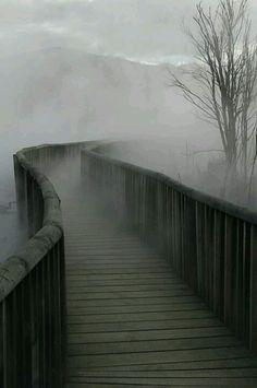 Again I would walk across that