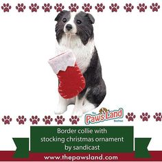 """#checkitout #christmas #products  Why We Love It:  The Border Collie Christmas Tree Ornament is a great way to decorate your home! Show off your love for your dog with this charming ornament. It features a realistic hand painted Border Collie! It's made of a cast stone mixture and is of the highest quality. The Border Collie Christmas Ornament is sure to capture all the beauty of your favorite pup!  Sizing Information:  Length: 3-4""""  Width: 1-3""""  Height: 2-4"""" #dogs"""