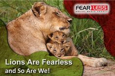 Two tiny lion cubs who think mom is just the best. Cute Baby Animals, Animals And Pets, Funny Animals, Beautiful Cats, Animals Beautiful, Lioness And Cubs, Gato Grande, Lion Love, Tier Fotos