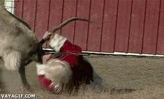 サンタも大変なんだなw