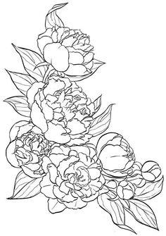 Шаблон пион art silk painting, flower sketches и flower patt Flower Pattern Drawing, Flower Tattoo Drawings, Floral Drawing, Flower Patterns, Flower Sketches, Art Sketches, Art Drawings, Silk Painting, Painting & Drawing