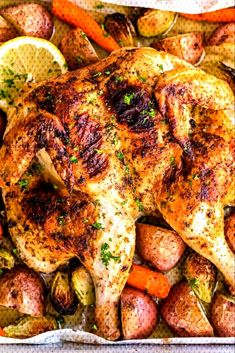 Spatchcock Chicken Recipe Video Baked Whole Fryer Chicken Recipes Baked Butter Chicken, Whole Baked Chicken, Stuffed Whole Chicken, Fryer Chicken Recipes, Chicken Recipes Video, Recipe Chicken, Best Whole Chicken Recipe, Baked Whole Chicken Recipes, Kitchen Recipes