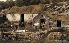 Note the thatched roof and the stone fencing. Farmhouses in Ireland Ireland Pubs, Ireland Homes, Ireland Travel, Architecture Ireland, Ireland People, Irish Famine, Old Irish, Irish People, Irish Cottage