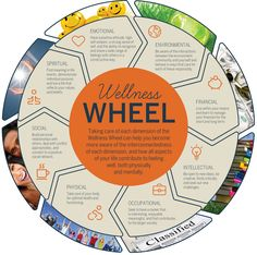 How to Create a Vision Board With Intention & Purpose + FREE Workbook Wellness Wheel – Wellness an der UNH – Wellness für Studenten Wellness Wheel, Wellness Plan, Personal Wellness, Health And Wellness, Mental Health, Health Education, Finding Meaning In Life, Workplace Wellness, Wheel Of Life
