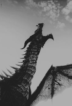 The dragon roared at the sky with a promise of retribution