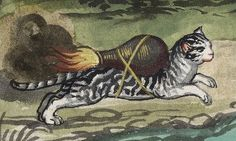 I gaped… was that really a picture of a cat and a bird propelled by rocket packs!? This seemed pretty unlikely for a 16th century manuscript, ...