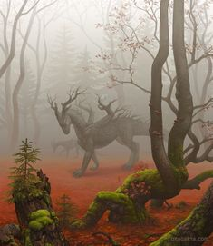 Mysterious Forest by Dragarta.deviantart.com on @DeviantArt