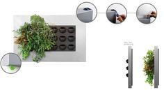 Vertical Garden Design, Vertical Gardens, Garden Terrarium, Terrariums, Live Picture, Green Plants, Water Garden, Wall Design, Indoor Plants