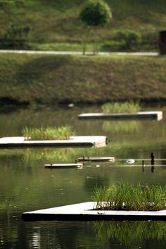 Floating Wetlands, Floating Islands, Aqua Biofilter, Aquaponics, Floating Reedbeds, Aquaponics Kitchen Garden, Biofilm, Floating Biofilter, Algal bloom, Aquaculture, Waste water treatment  