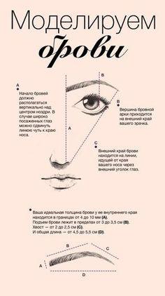 """Вдохновленные «Витрувианским человеком» да Винчи, вооружившись линейкой и некоторой долей юмора, давайте попытаемся открыть секрет идеальной женской брови. Смотреть полностью """"Инфографика: моделируем брови. Научный подход"""" - http://www.yapokupayu.ru/blogs/post/infografika-modeliruem-brovi-nauchnyy-podhod"""
