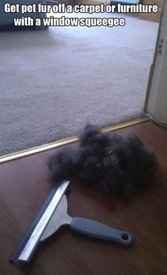 lifehack remove pet fur