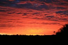Uluru-Kata Tjuta National Park Photos - Featured Images of Uluru-Kata Tjuta National Park, Red Centre Park Pictures, Park Photos, Red Centre, Travelogue, Trip Advisor, National Parks, Wildlife, Australia, Sky