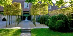 Schilde Wirtz PAYSAGISTE                     Inspirations, Idées & Suggestions, JesuisauJardin.fr, Atelier de paysage Paris, Stéphane Vimond Créateur de jardins  #paysagiste #ArchitectePaysagiste #Gardendesigner #LandscapeArchitect #LandscapeDesigner #AtelierdePaysage #jesuisaujardin