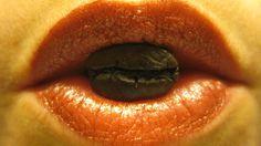 1er avatar de @la_doucet sur Google+ & Twitter ---- Grains de café Maragogype entre ses lèvres Doucet, Avatar, Signs, Twitter, Google, Shop Signs, Sign