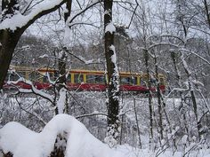 S-Bahn Berlin (S7 im Grunewald) ... by bayernernst, via Flickr
