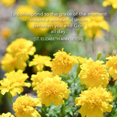 To correspond to the grace of the moment means a wonderful union between you and God all day. Elizabeth Ann Seton, Daughters Of Charity, Saint Peter Square, Mom Died, Catholic Books, Church Of England, New Wife, Pope John, Spiritual Wisdom