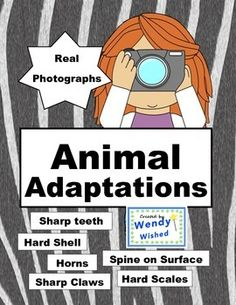 Animal photo pages for Next Generation Science Standard for traits, adaptations, heredity, inheritance, structure and function helping them survive., Six pages with real photos are in this set.  Learn about parts of the animals that help them survive.