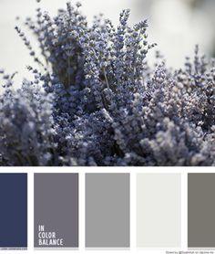 Lavendel color palette.