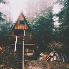 curated cabin