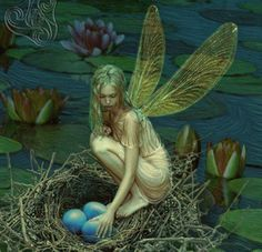 Fairy in nest