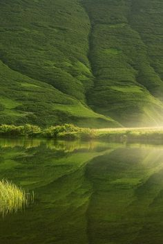 green landscape and reflection