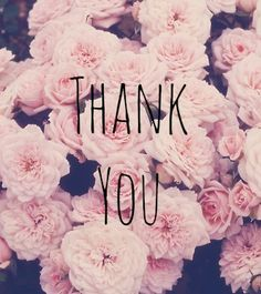 www.sienna-meek.blogspot.com  thank you to all my followers//readers.