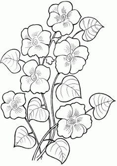 Раскраска Кустик выпустил цветки
