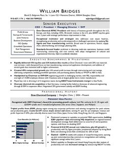 Lovely Award Winning CEO Sample Resume; Resume Writers Chicago, Raleigh, NYC.