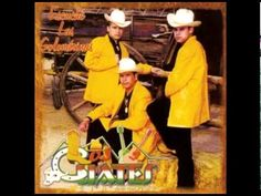 Escuche Las Golondrinas-Los Cuates De Sinaloa