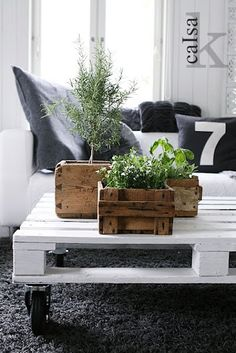 little pallet planter boxes & white painted pallet coffee table