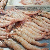 Langostinos Trasmallo – B2B Visor Fresco, Coco, Shrimp, Meat, Preserve, Appetizers, Spice, Fruits And Vegetables, Mead