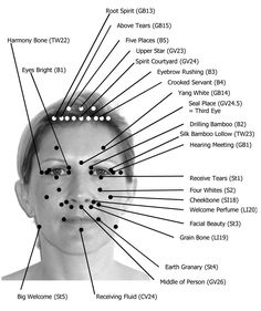 This facial acupressure chart shows all the acupressure points located on the face and on the skull. Many meridians run across the face.