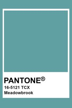 Pantone Tcx, Pantone Swatches, Color Swatches, Colour Pallete, Colour Schemes, Color Trends, Color Combos, Pantone Colour Palettes, Pantone Color