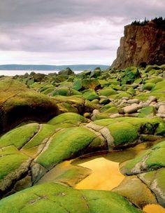 Bay of Fundy, New Brunswick
