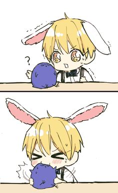 Bunny Kise and bird Aomine // KnB