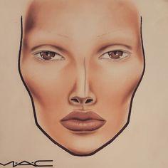 Contoured facechart