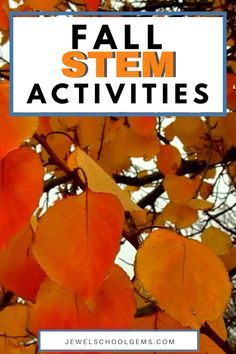 4 FUN FALL STEM ACTIVITIES FOR KIDS by Jewel's School Gems — In this blog post, I'm highlighting 4 fun Fall STEM Challenges for kids in the elementary classroom. Have your students design and build an Apple Slingshot, a Pumpkin Boat, a Scarecrow, and a Bird Feeder. These STEM projects develop the 4Cs and are perfect for Fall or Autumn. Click to learn more.