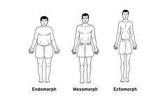 Mesomorphs are large boned and have highly defined muscles, with a low, narrow waist. Men are rectangular, and women are hourglass-shaped. Ectomorphs are thin, lightly muscled with small wrists and ankles. Endomorphs are soft and round, with shorter limbs, high waists, small hands and feet. Generally most people are mixtures of body types, but those who are mesomorphic tend to do well in sports such as weightlifting, while running is where ectomorphs are found to excel.